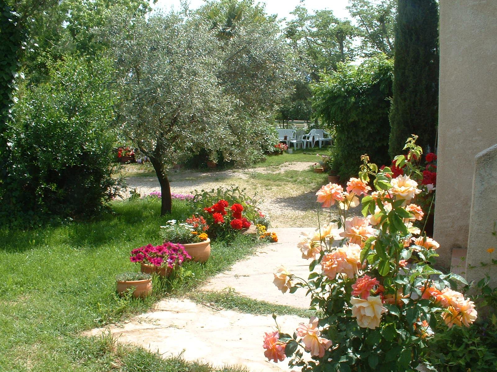 provence_sud_luberon_gîte_des_condamines_jardin