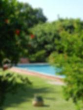provence_sud_luberon_gîte_condamines_piscine.JPG