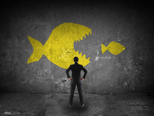 3 Important Communications When Landing a Big Fish