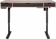 Martin Furniture Motus Electric Motorized Sit_Stand Desk.jpeg