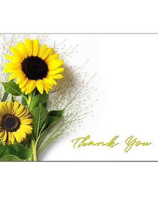 Sunflower-TY.jpg