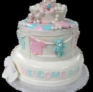 baby bath cake.png