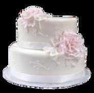 pink rose wedding cake with piping.png