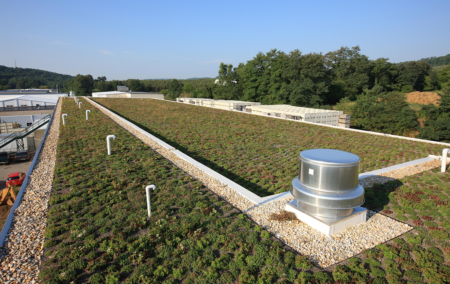 woodroofing_greenroof_06