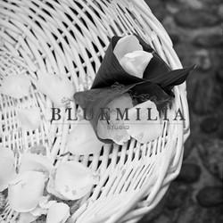 bluemilia_cesto.jpg