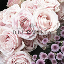 bluemilia_rose.jpg