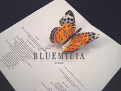 bluemilia_invito_farfalla.jpg