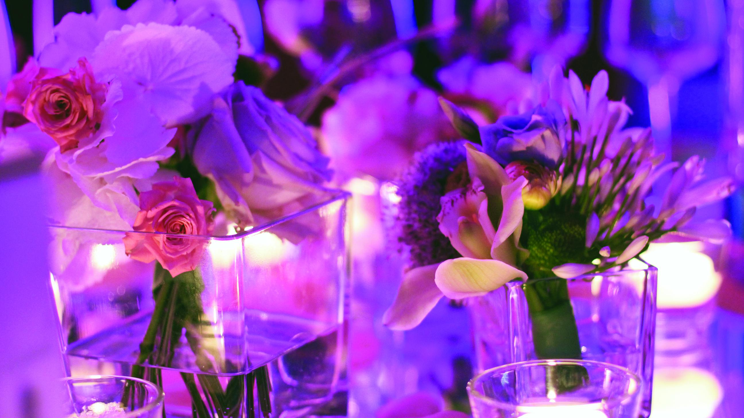 Bluemilia - luci e fiori