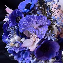 bluemilia_fioriblu.jpg