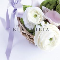 bluemilia_white_2.jpg