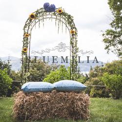 bluemilia_country_2.jpg