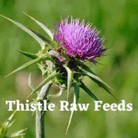 Thistle raw feeds - Duck and Tripe