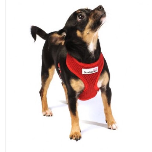 Doodlebone airmess harness medium