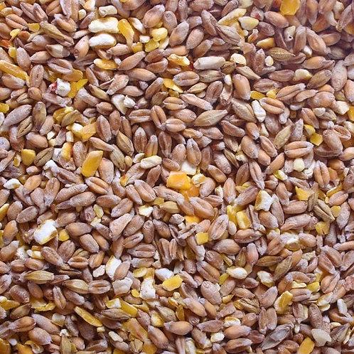 Poultry Corn - 2kg