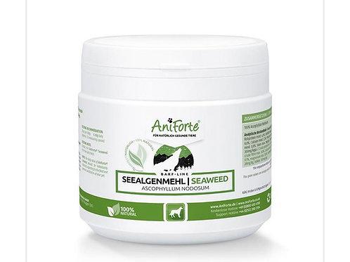 Aniforte - Seaweed powder 250g