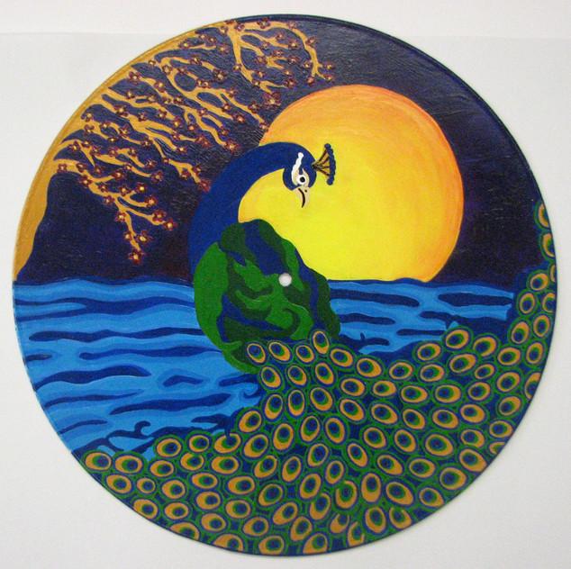 Peacock Dreamin