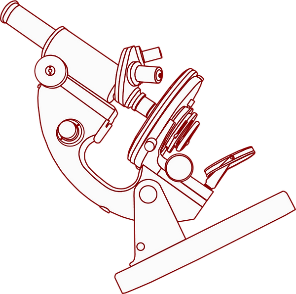 clipart-microscope-c92c (1).png