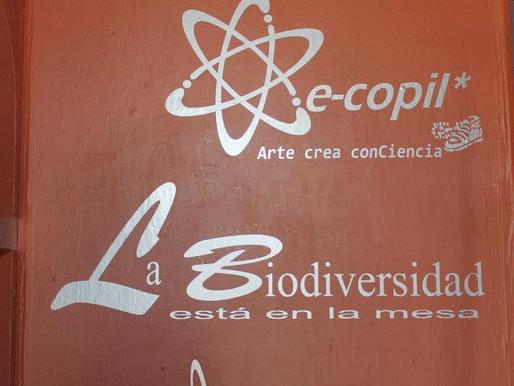 """La biodiversidad esta en la mesa """"Exposición itinerante"""" 2012."""