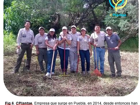 Humedales Artificiales Más allá de un refugio para la biodiversidad.