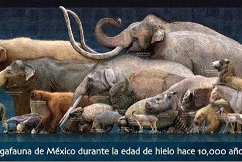 Megafauna de México durante la edad de hielo hace 10,000 años