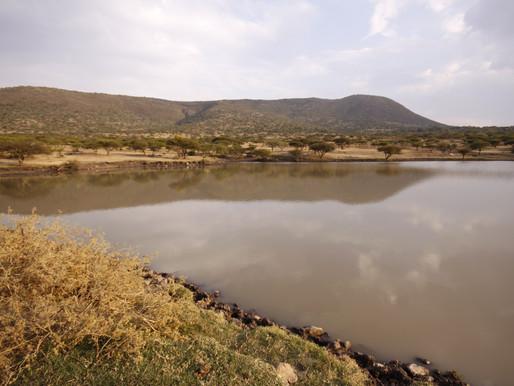 """Reforestación """"Cerro de la Mesa Ahumada"""" 2013"""