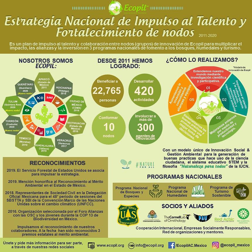 Infografia Estrategia Nacional.jpeg
