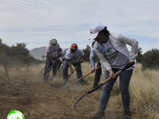 El voluntariado cambia el mundo