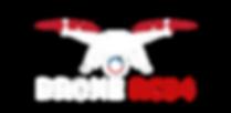 Logo Drone blanc.png