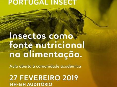 Food Talk #2 - Insectos como fonte nutricional na alimentação.