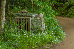Old Sark well