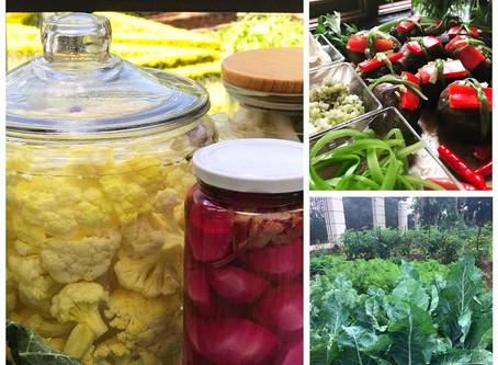 Fresh Cauliflower and Aubergine Pickles