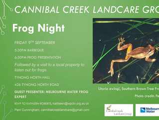 Frog Night Reminder - Better Hop To It!