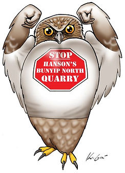 Powerful Owl Stop the Quarry favicon.jpg