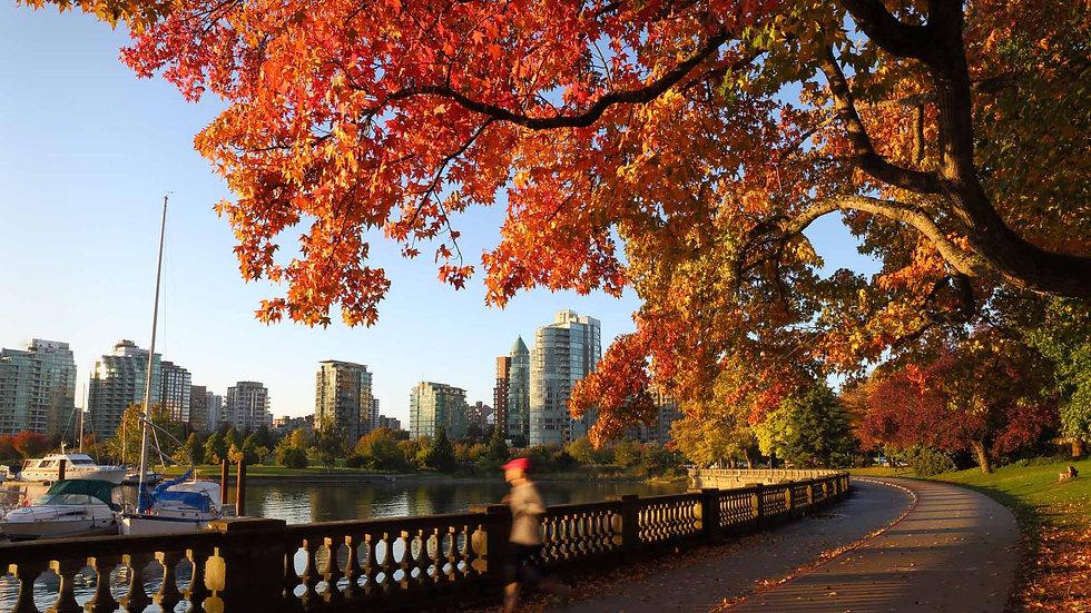 温哥华最美赏枫季~赏枫攻略一日游
