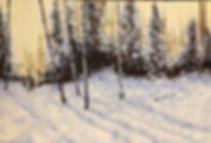 Fresh SnowLR.jpg