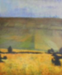Distant+fields