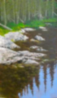 ReflectingLR.jpg