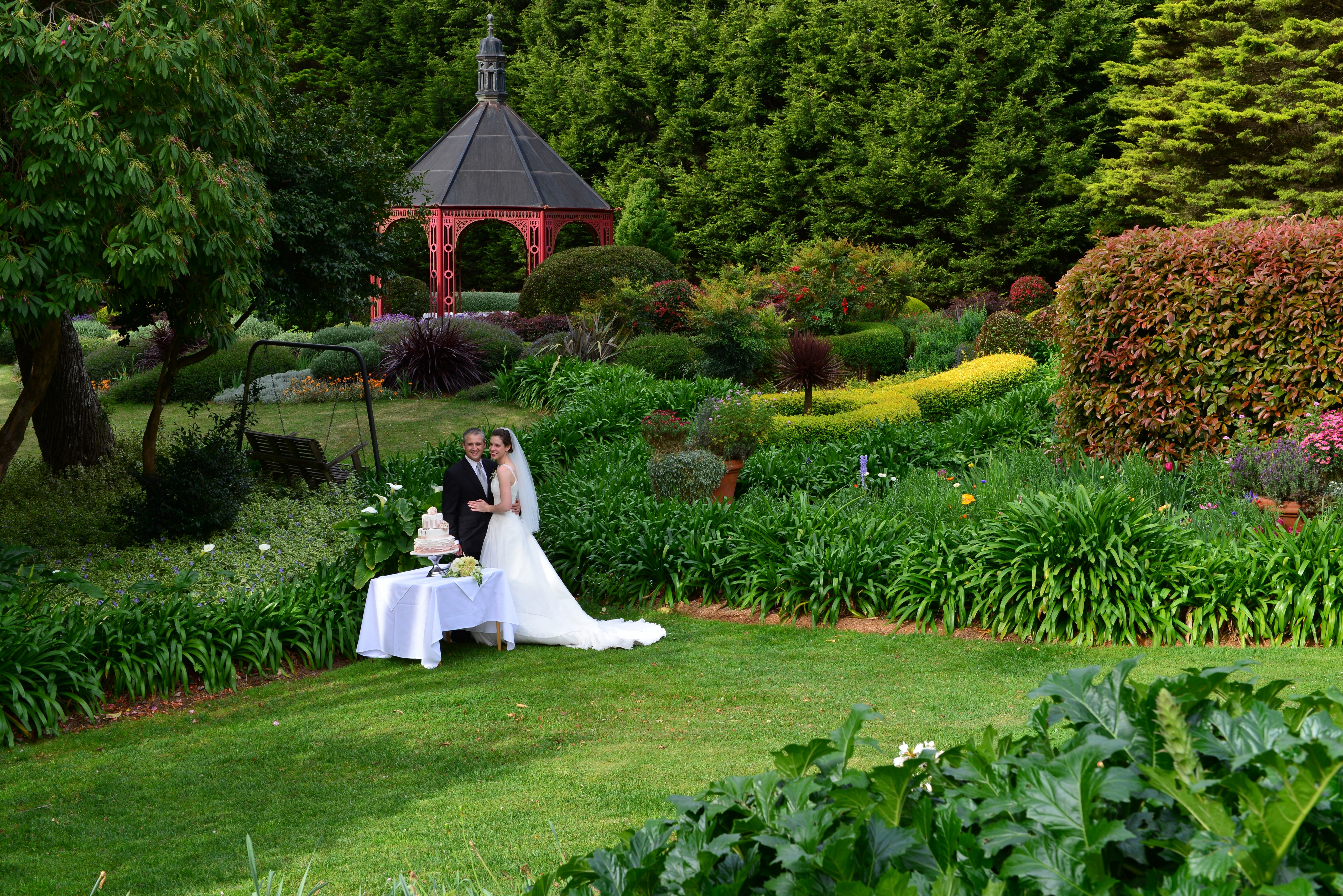 great wide shot, couple,gardens, cake