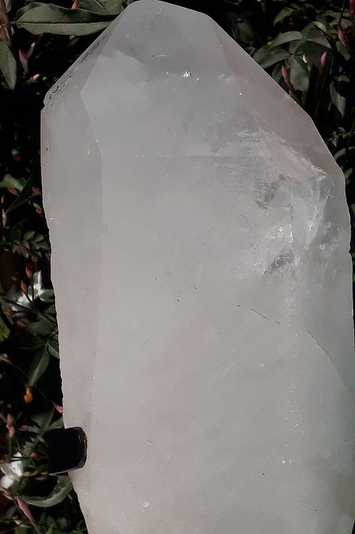 Quartz Point on Metal Stand (2 KG)