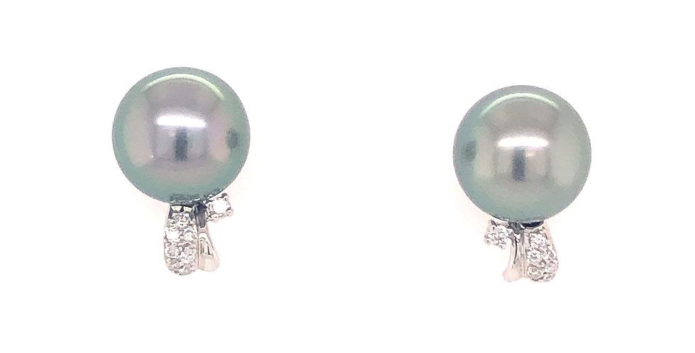14KW Tahitian Pearl Earrings