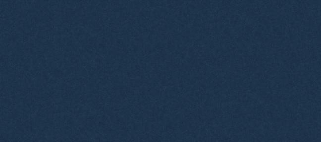 plana bicolor i llis_1.jpg