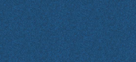 plana bicolor i llis_3.jpg