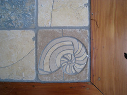 Seascape Border Shell- Nautilus