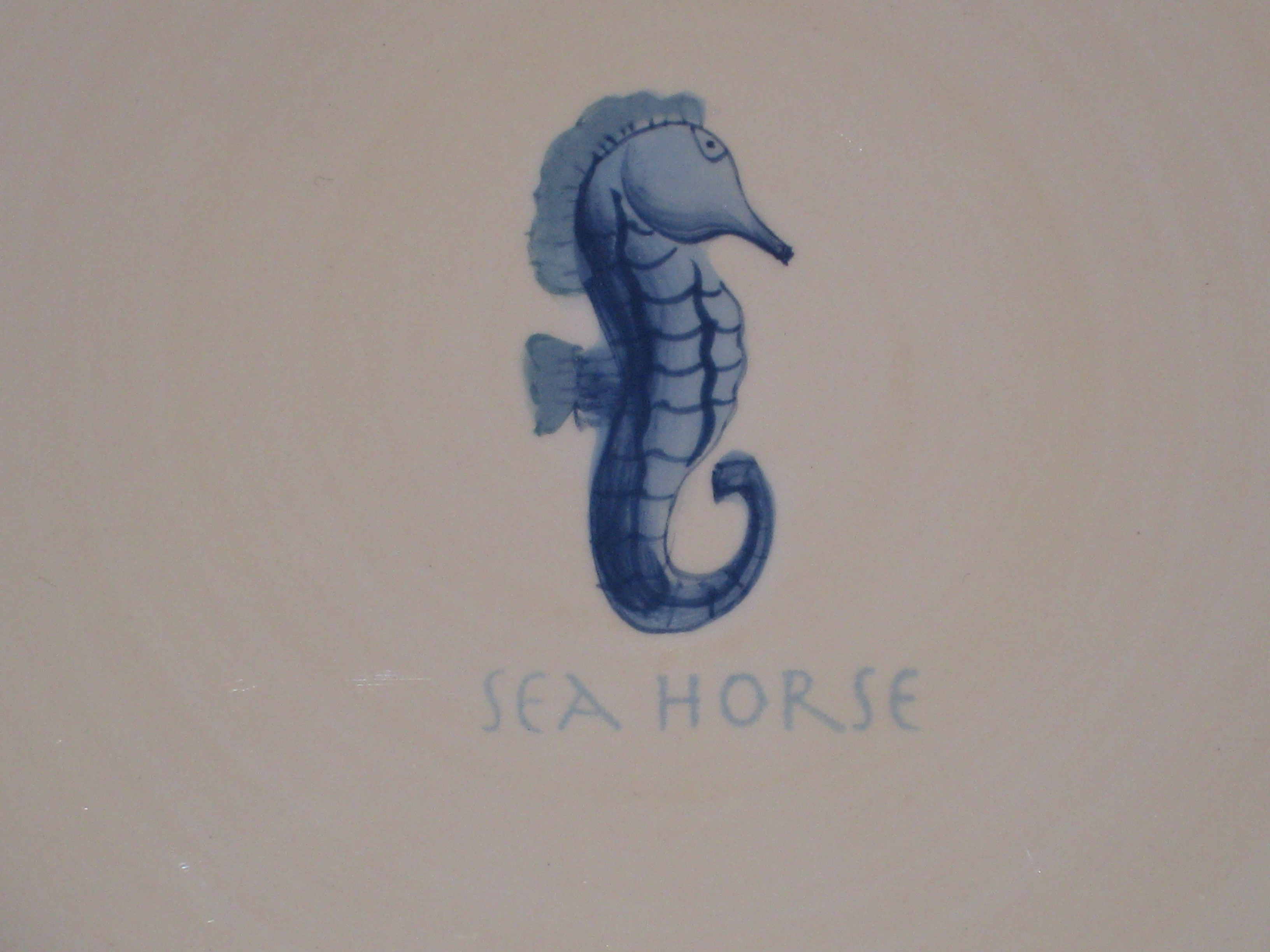 Reference Image of Seahorse