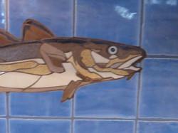 Cod Fish Close-Up
