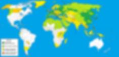 Xefjords_Complete_Languages_Map%20(20-06