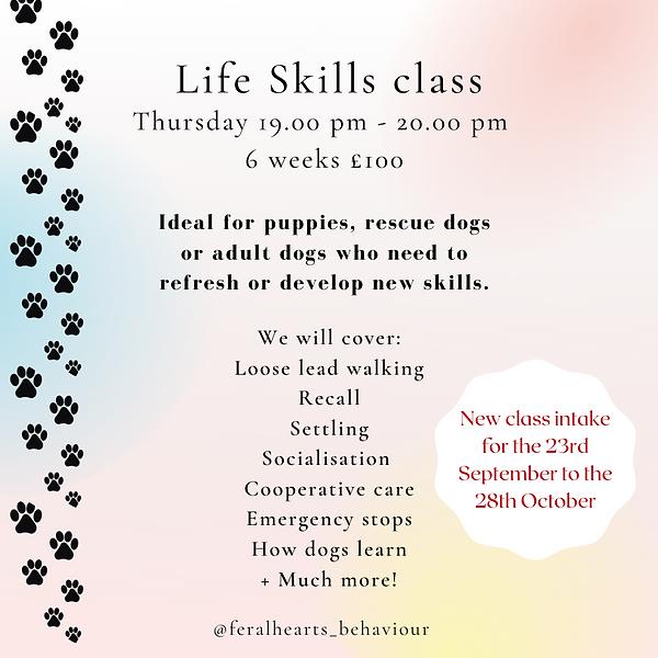 Life skills advert 2nd class.png