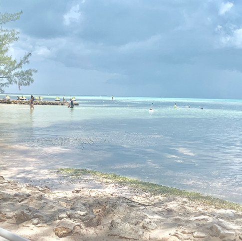 Our private beach is next to Rum Point Beach for the best of both worlds.