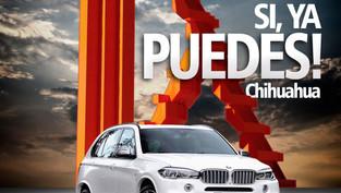 BMW Chihuahua