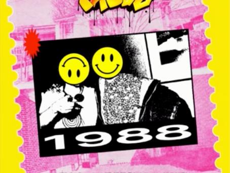 1988 Acid House Mix - DJ Faydz (2018)